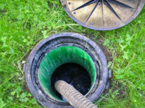Достоинства биоочистки