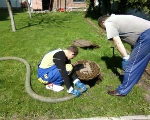 Шланг в канализационном люке