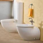 Как выбрать гигиенический душ для унитаза